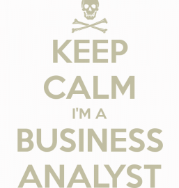 Project Manager y Business Analyst – ¿amigos o enemigos?